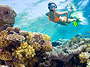 Snorkeling Excursions